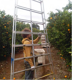 Man showing the correct way to carry a bow ladder